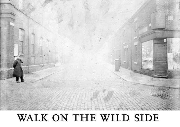 Walk On The Wild Side invitation image